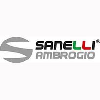Sanelli Ambrogio